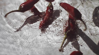 chilli splash 03